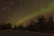 View of the Northern Lights northeast of Inari, in Northern Finland, close to the Norwegian border near Suolisjärvi.
