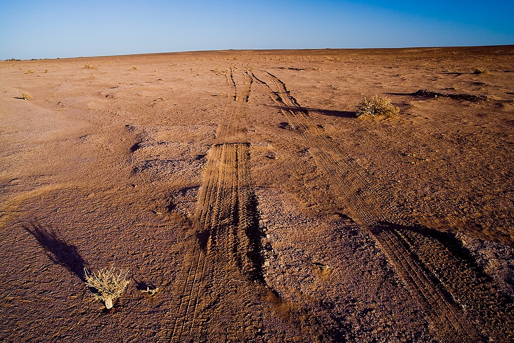 Jeep tracks, embossed into the fragile crust of the desert plateau, extend to the horizon towards the popular dunes of Erg Chigaga near the frontier town of M'hamid, Morocco. The tourism industry has taken off in the last few years thanks to the relaxing of tensions with neighboring Algeria.