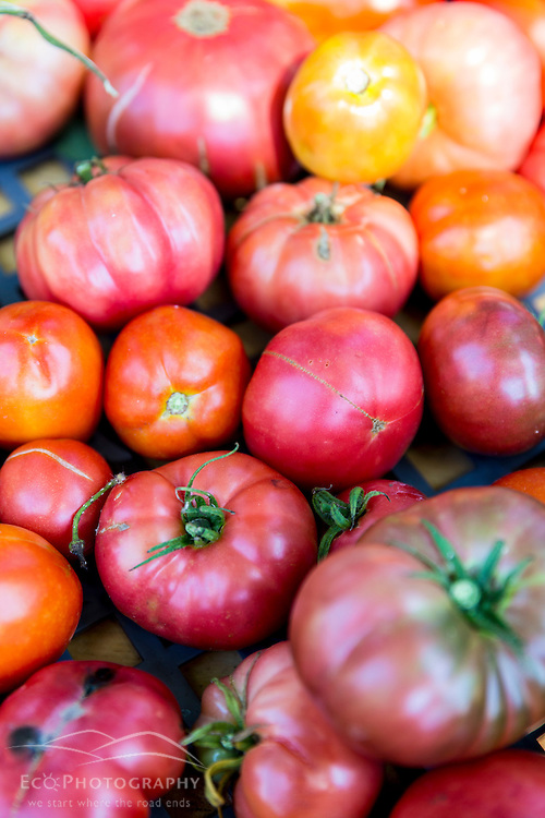 Heirloom tomatoes recently picked at Garrison-Trotter farm in the Dorchester neighborhood of Boston, Massachusetts.