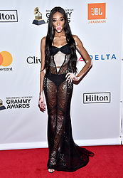 Winnie Harlow attends the Clive Davis and Recording Academy Pre-GRAMMY Gala and GRAMMY Salute to Industry Icons Honoring Jay-Z on January 27, 2018 in New York City.. Photo by Lionel Hahn/ABACAPRESS.COM