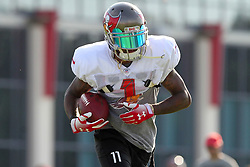 July 28, 2018 - Tampa, FL, U.S. - TAMPA, FL - JULY 28: DeSean Jackson (1) carries the ball during the Tampa Bay Buccaneers Training Camp on July 28, 2018 at One Buccaneer Place in Tampa, Florida. (Photo by Cliff Welch/Icon Sportswire) (Credit Image: © Cliff Welch/Icon SMI via ZUMA Press)