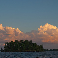 Late afternoon cumulus clouds float behind  white pines on an island in Lake of the Woods,  Ontario, Canada.