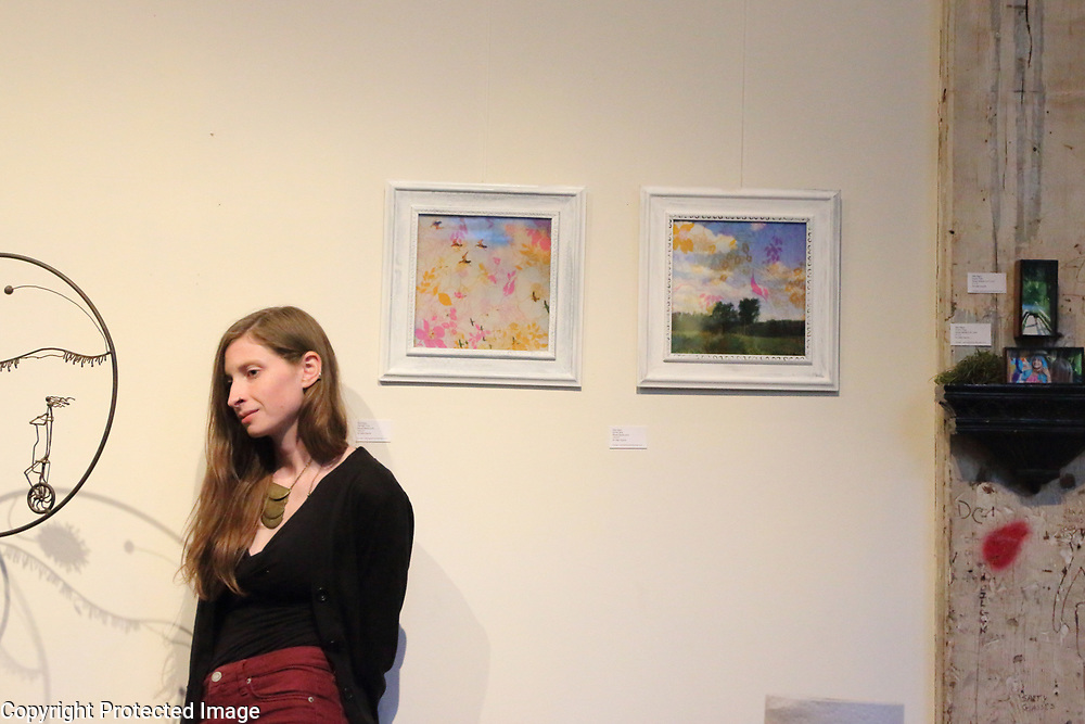 star Nigro exhibited/co curated art show with Seed Song Farm 2017<br /> <br /> photo: musician an art opening with my photos exhibited<br /> <br /> starnigro.com<br /> <br /> © 2021 All artwork is the property of STAR NIGRO.  Reproduction is strictly prohibited.