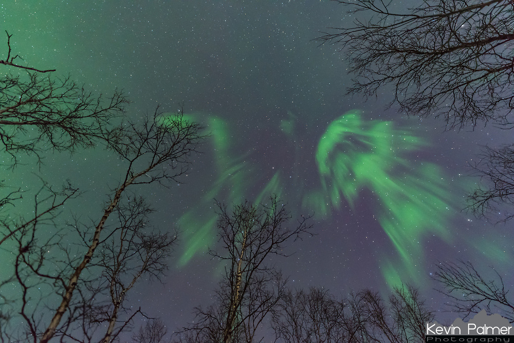 After an auroral substorm, a corona formed at the zenith. A corona is a very fast moving type of aurora, where the rays appear to converge. But by the time I finished a time lapse and pointed my camera straight up, most of it was gone.