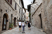 Tourists in the ancient streets of Assisi, Umbria, Italy. Assisi is a town in the Province of Perugia in the Umbria region, on the western flank of Monte Subasio. It is generally regarded as the birthplace of the Latin poet Propertius, and is the birthplace of St. Francis, who founded the Franciscan religious order in the town in 1208, and St. Clare, Chiara dOffreducci, the founder of the Poor Sisters, which later became the Order of Poor Clares after her death. Assisi is now a major tourist destination for those sightseeing or for more religious reasons.