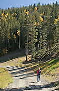 Vertical of hiker on trail in Taos Ski Valley, New Mexico<br />