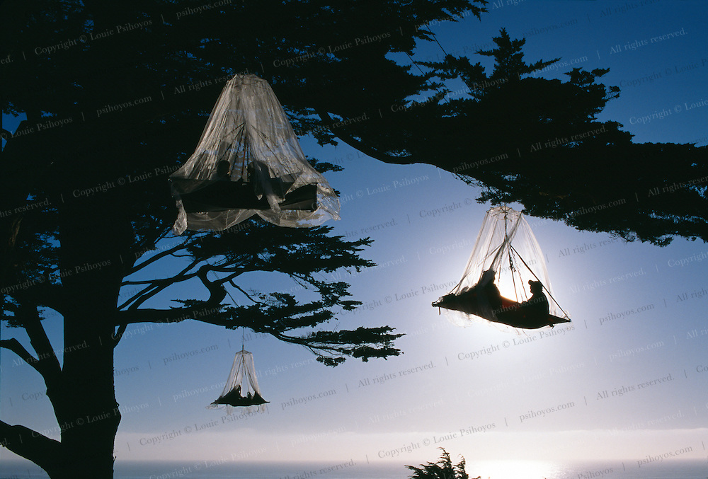 Three porta-ledges made by North Face with mosquito netting on the California Coast near Elk, California.