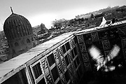 Cairo, Egypt, The City of the Dead, 2000 - pidgeon coop on a roof top in the qaitbay area
