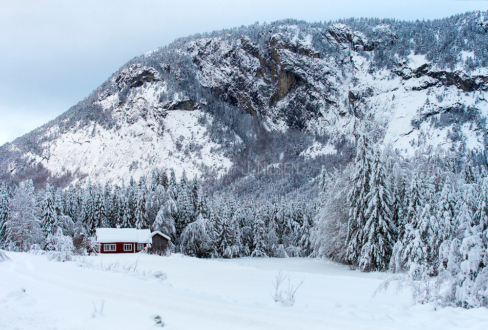 Winter landscape at Urebakksbenken (close to the river Otra) in Bygland county, Setesdal, Aust-Agder, Norway