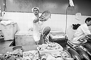 A fishmonger holds a large fish in the old covered market on the riverside in Manaus, Amazonia, Brazil. Photo by Andrew Tobin/Tobinators Ltd