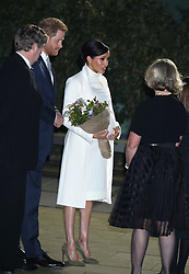 The Duke and Duchess of Sussex arrive at the Natural History Museum in London to attend a gala performance of The Wider Earth.