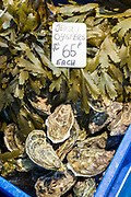 Jersey European Oysters, Ostrea edulis, and seaweed on sale at St Helier Fish Market in Jersey, Channel Isles