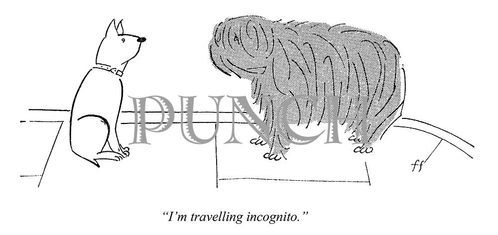 """I'm travelling incognito."""