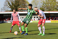 Lyle Taylor forward for AFC Wimbledon (33) shields the ball from Fraser Franks defender of Stevenage FC (5) during the Sky Bet League 2 match between Stevenage and AFC Wimbledon at the Lamex Stadium, Stevenage, England on 30 April 2016. Photo by Stuart Butcher.