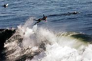 Surfer, in flight, Santa Cruz, California