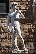 Replica copy of Michelangelo's statue of David, in Piazza Signoria by the Palazzo Vecchia, Florence, Tuscany, Italy