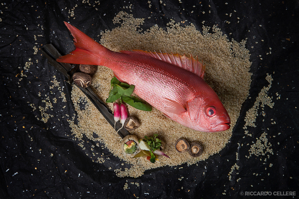Food Photography. Fish on brown rice