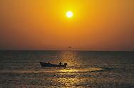 Fishermen form Quriyat at sunset time, Muscat