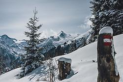 THEMENBILD - rot weiß roter Wegweiser auf einem Holzstamm in einer verschneiten Winterlandschaft. Das Kitzsteinhorn im Hintergrund bei Sonnenschein, aufgenommen am 27. Februar 2020 in Kaprun, Oesterreich // red white red signpost on a wooden trunk in a snowy winter landscape The Kitzsteinhorn in the background in sunshine, in Kaprun, Austria on 2020/02/27. EXPA Pictures © 2020, PhotoCredit: EXPA/Stefanie Oberhauser