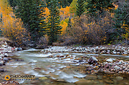 Castle Creek in autumn in the White River National Forest near Aspen, Colorado, USA