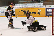 05.03.2011, Wetzikon, Eishockey 1. Liga, Wetzikon - Weinfelden, Tor   (Thomas Oswald/hockeypics)