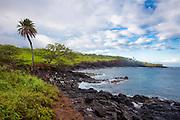 Coast Guard Road, Hawi, North Kohala, The Big Island of Hawaii