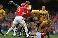 Mark Chisholm of Australia is upended by Sam Warburton of Wales (7). Invesco Perpetual series, autumn international, Wales v Australia at the Millennium Stadium in Cardiff on Sat 6th Nov 2010.  pic by Andrew Orchard, Andrew Orchard sports photography,
