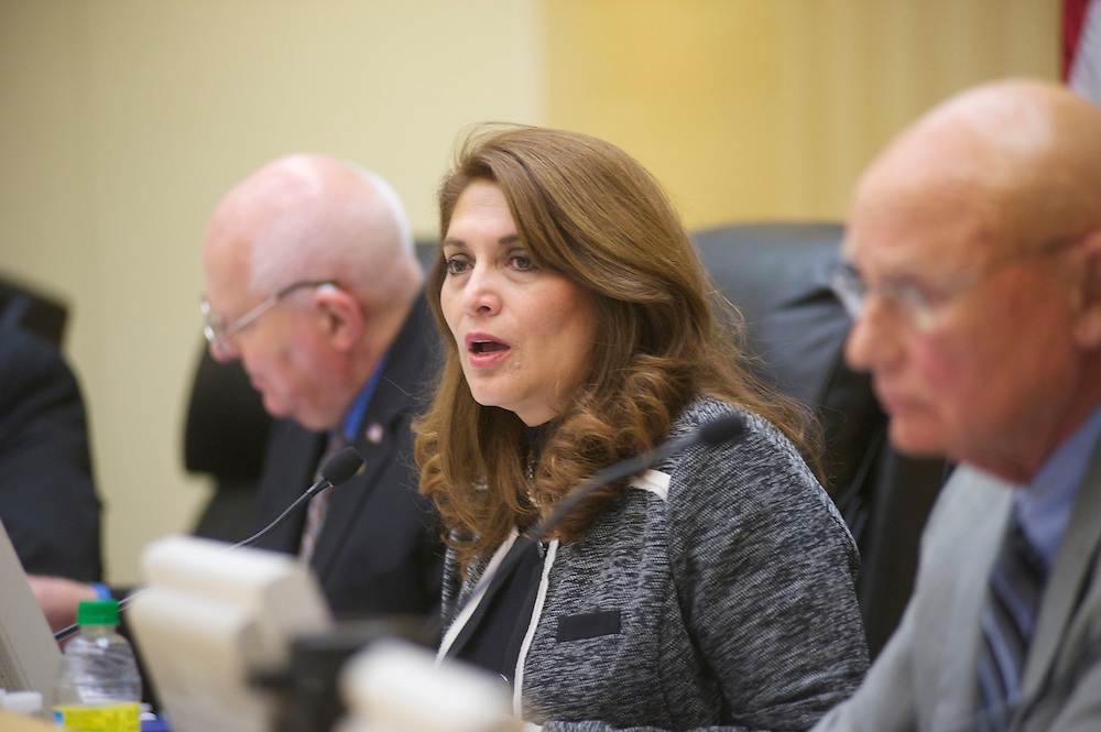 """At this meeting, Sharon Quirk-SIlva was elected Mayor, Pat McKinley Mayor Pro Tem, and Ron THomas led a group or kelly's Army in reading the recent OC Weekly story """"Bullies in Blue."""""""