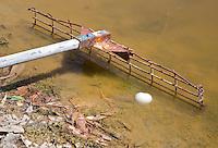 HALL'S GAP -  Mount Difficult Golf Course , speciale hark in waterhindernis op de ballen boven water te halen. -  COPYRIGHT KOEN SUYK