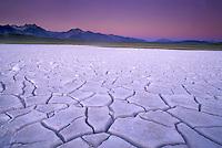 Dry Alkali  lake bed near Mammoth, CA