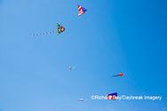 63495-02710 Kites flying at Flagler Beach Flagler Beach, FL