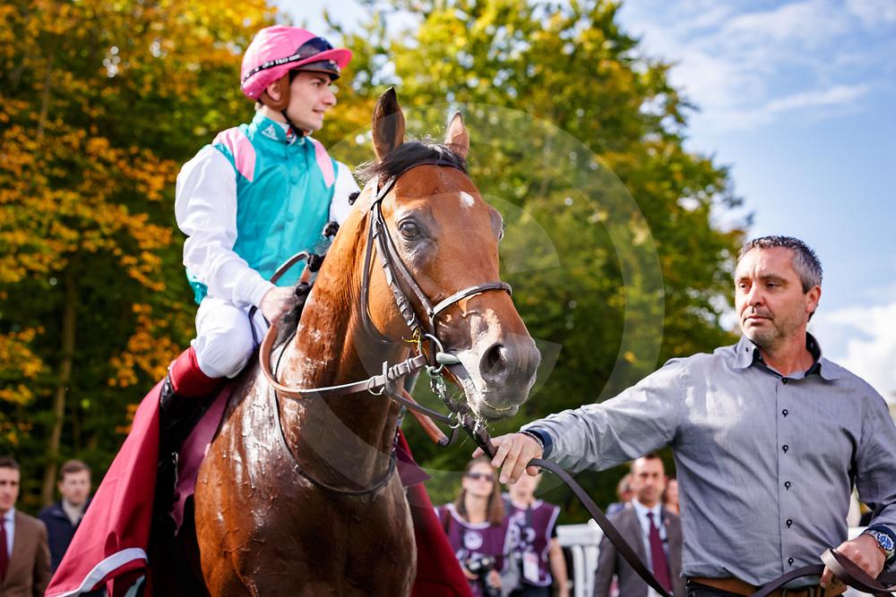 Ice Breeze (V. Cheminaud) wins Qatar Prix Chaudenay Gr. 2 in Chantilly, France 30/09/2017 photo: Zuzanna Lupa