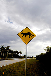 FL: Florida Everglades National Park,.Street crossing sign for endangered cougar..Photo Copyright: Lee Foster, lee@fostertravel.com, www.fostertravel.com, (510) 549-2202.Image: flever227