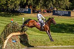 Vogg Felix, SUI, Archie Rocks<br /> European Championship Eventing<br /> Luhmuhlen 2019<br /> © Hippo Foto - Dirk Caremans