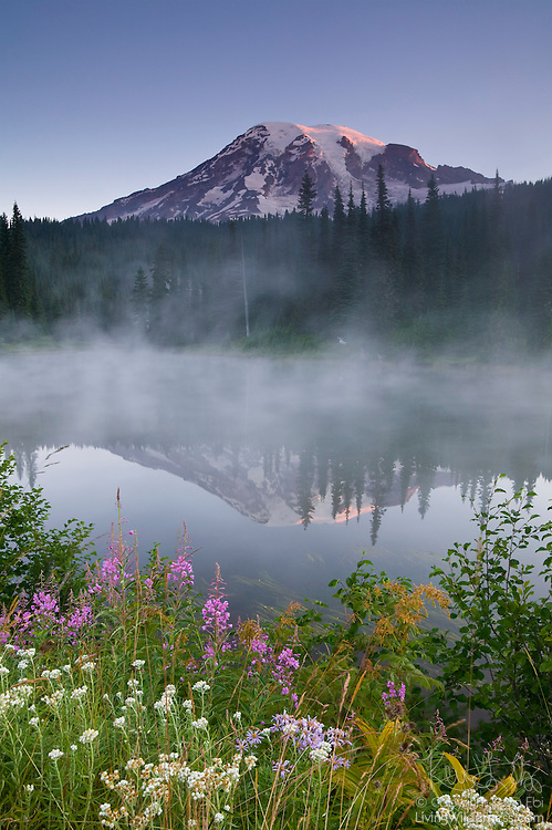 Mount Rainier, the tallest volcano in Washington state, towers over the steaming Reflection Lake in Mount Rainier National Park.