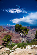 View of the Grand Canyon from Hermits Rest