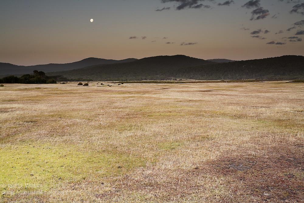 Late Summer Evening - Tasmania