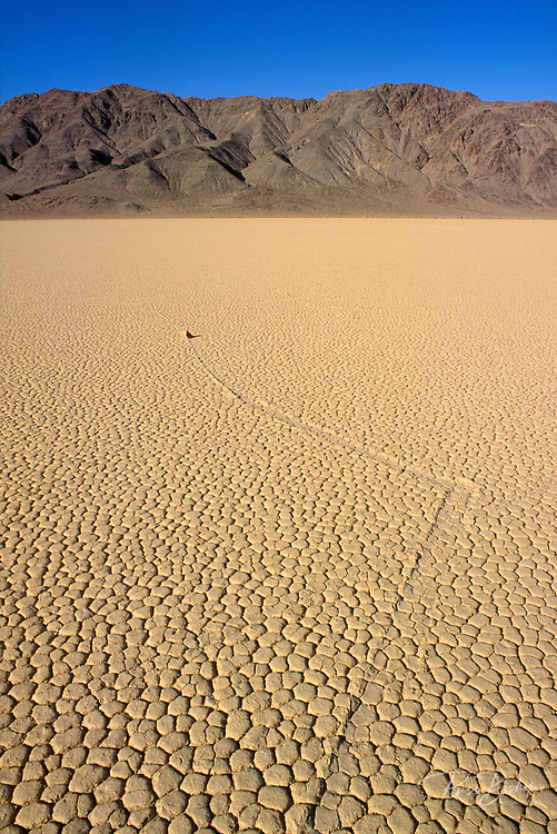 Morning light on one of the mysterious moving rocks at The Racetrack, Death Valley National Park, California.