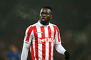 Mame Biram Diouf of Stoke City looks on. Premier league match, Stoke City v Leicester City at the Bet365 Stadium in Stoke on Trent, Staffs on Saturday 17th December 2016.<br /> pic by Chris Stading, Andrew Orchard sports photography.