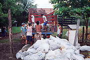 bags of eggs of olive ridley sea turtle, Lepidochelys olivacea, are loaded into truck for transport during controlled, legal harvest, Playa Ostional, Costa Rica, Central America ( Eastern Pacific Ocean )