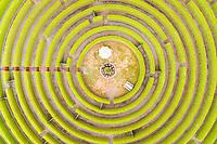 Aerial view above gigantic Maze at Rotorua, New Zealand.