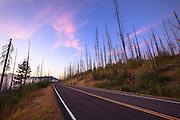 Road in Glacier National Park, Montana.