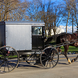 Ronks, PA / USA - January 10, 2016:  A typical Amish buggy in Lancaster County, PA