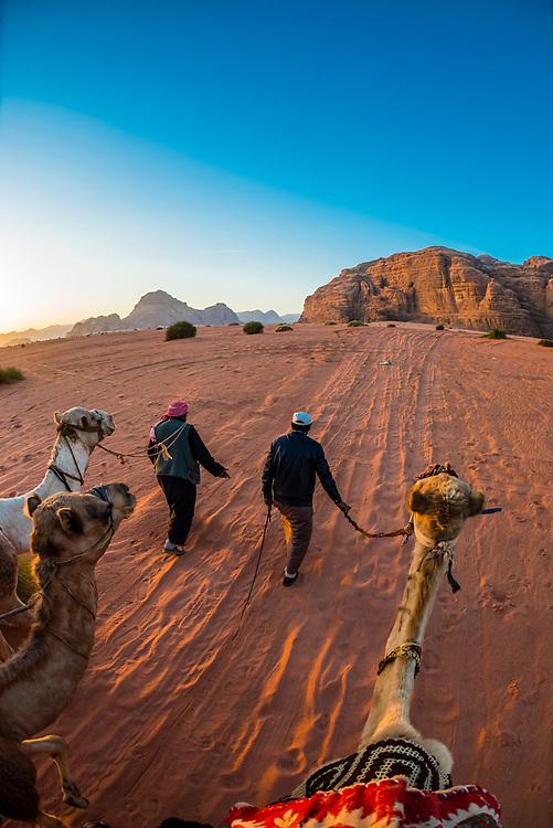 Bedouin men and camels, Arabian Desert, Wadi Rum, Jordan.