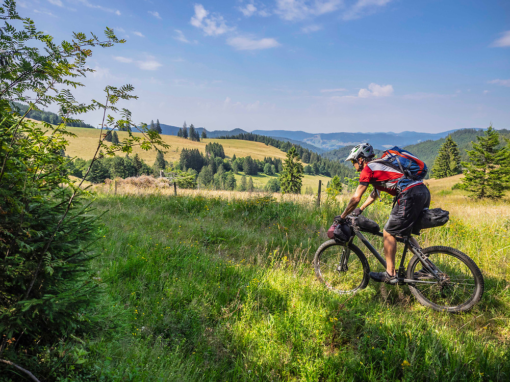 Mountain biker cycling through forest, near Todtnau, Baden-Wuerttemberg, Germany