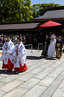"""Japanese Shinto Wedding - The Japanese couple must first be legally married by filing for marriage at their local government office, and the official documentation must be produced in order for the ceremony to be held. Traditionally, marriages were categorized into two types according to the method of finding a partner—miai, meaning arranged or resulting from an arranged introduction, and ren'ai, in which the principals met and decided to marry on their own.  The Japanese bride-to-be may be painted pure white from head to toe, visibly declaring her maiden status to the gods.  Traditional Japanese wedding customs """"shinzen shiki"""" involve an elaborate ceremony held at a Shinto shrine.  Traditional Shinto Wedding Procession at Meiji Jingu Shrine.  In addition to the shinto ceremony, there are often faux-western wedding ceremonies held in """"wedding halls""""."""