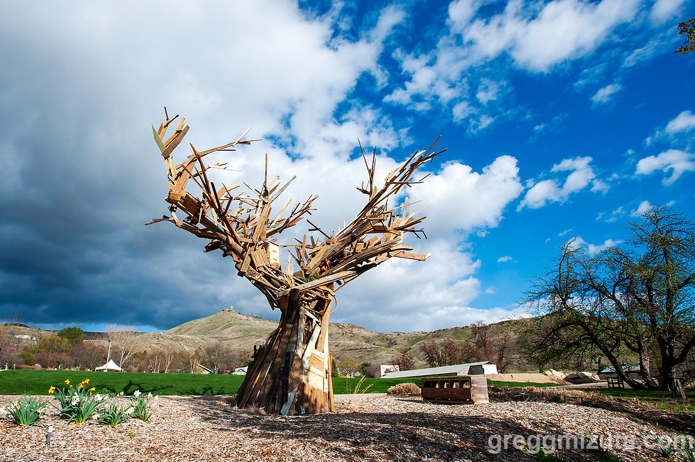"""Han Seok Hyun's large scale sculptural work, """"Reverse Rebirth"""" at the Idaho Botanical Garden, April 10, 2019 in Boise, Idaho.<br /> <br /> The exhibit consist of 10 ephemeral works using natural materials by local artists: Elizabeth Dickey, Alek de Dóchas, Dyan Ferren, Michele Lesica, Jennifer Mahlum, Helen McGill, Lisa Pisano, Claire Remsberg, Heather Wright, and Ace Zappa.<br /> <br /> This was the Idaho Botanical Garden's first ever Land Art Exhibit and featured works using natural materials such as clay, leaves, seeds, stones, wood, and wool. These pieces challenged the artists to think about creating art that does not permanently occupy a space. Due to the nature of these natural art pieces the displays will decay and decompose over time."""