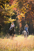 Photo by Brandon Alms Photography of two women riding horses in the fall.