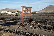 Bodegas La Florida, La Geria vineyard tourist attraction for sampling and buying wine, San Bartolome, Lanzarote, Canary Islands, Spain