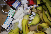 """Bananas and bandages in the locker rooms<br /><br />MMA. Mixed Martial Arts """"Tigers of Asia"""" cage fighting competition. Top professional male and female fighters from across Asia, Russia, Australia, Malaysia, Japan and the Philippines come together to fight. This tournament takes place in front of a ten thousand strong crowd of supporters in Pelaing Stadium. Kuala Lumpur, Malaysia. October 2015"""